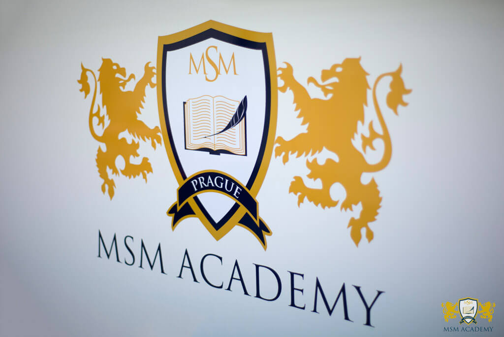 Image result for msm academy
