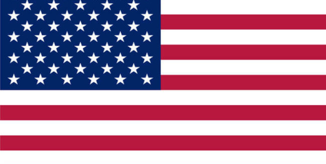 americká vlajka. USA. MSM Academy