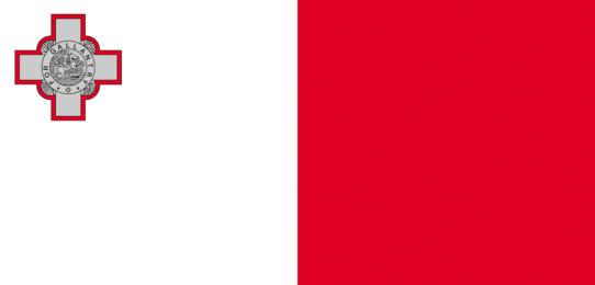 Flag of Malta. Studium na Maltě. MSM Academy