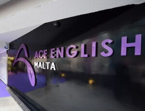 ACE English Malta Logo. MSM Academy