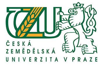 лого чзу