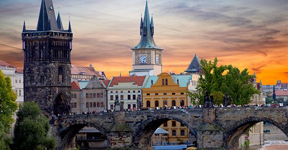 Полугодовой курс чешского + подготовка в медицинские вузы